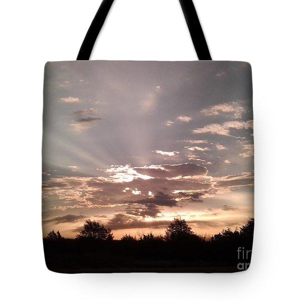 Splendid Rays Tote Bag by Susan Williams