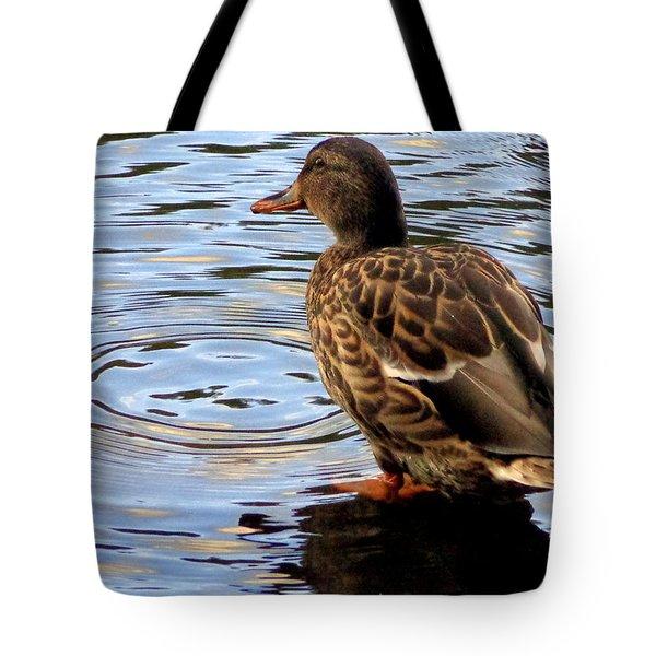 Tote Bag featuring the photograph Splish Splash by Joseph Skompski