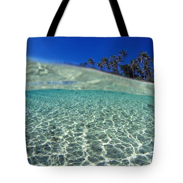 Split Level Palms Tote Bag by Sean Davey