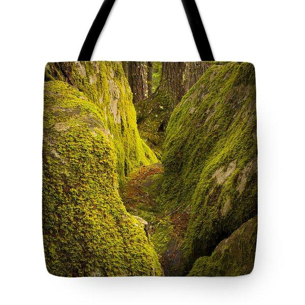 Split Rock Tote Bag