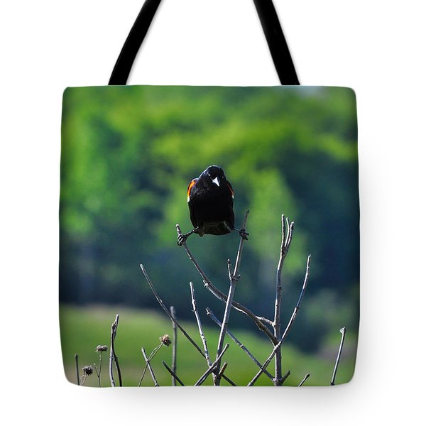 Splits Tote Bag