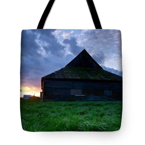 Spooky Shadow Barn Tote Bag by Eti Reid
