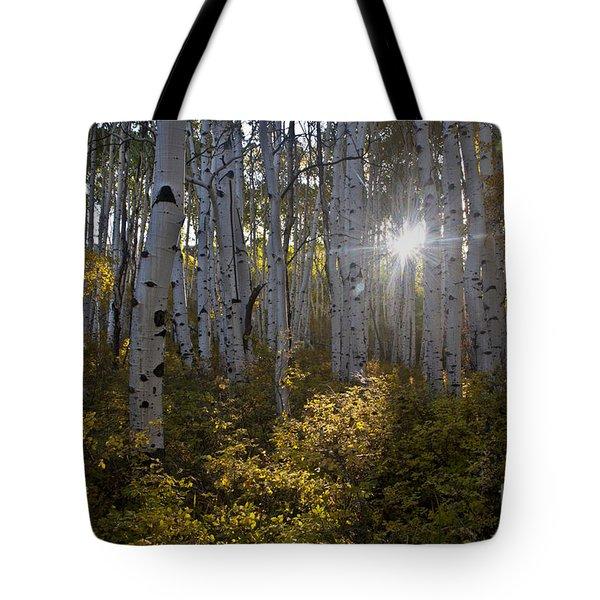 Spot Of Sun Tote Bag by Jeffrey Kolker