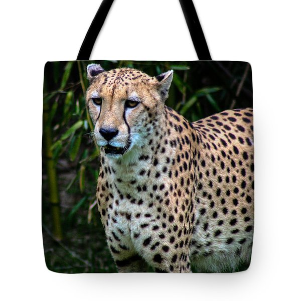 Spotted Beaut Tote Bag