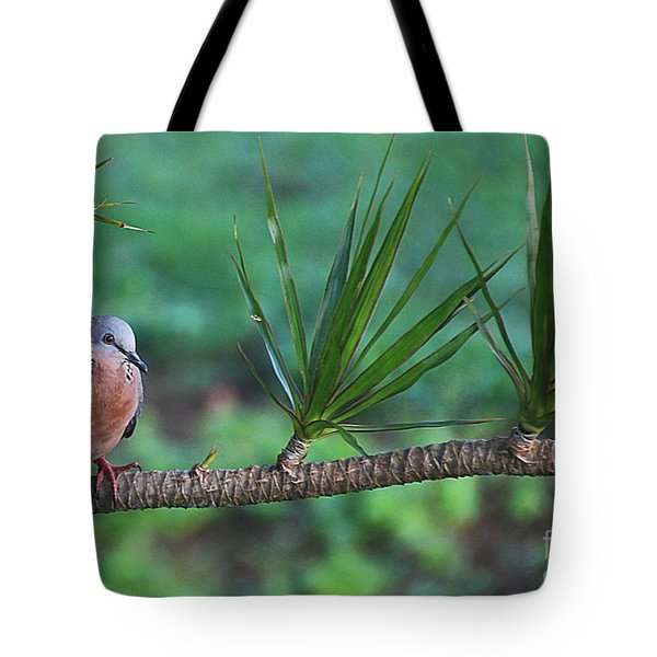 Spotted Dove Tote Bag by Elizabeth Winter