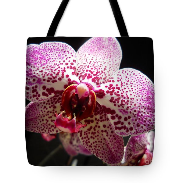 Tote Bag featuring the photograph Spotted Purple Orchid by Ramona Matei