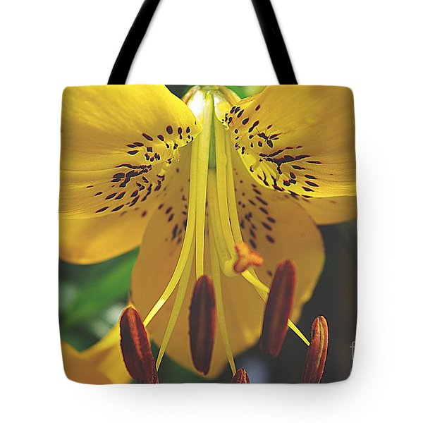 Spread Your Wings Tote Bag by John S