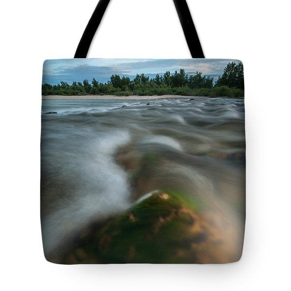 Spring Afternoon Tote Bag by Davorin Mance