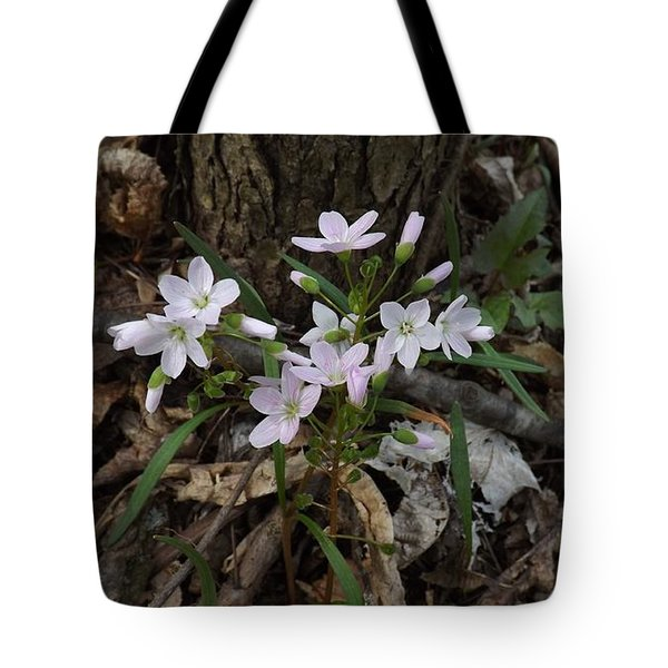 Spring Beauty Tote Bag by Sara  Raber
