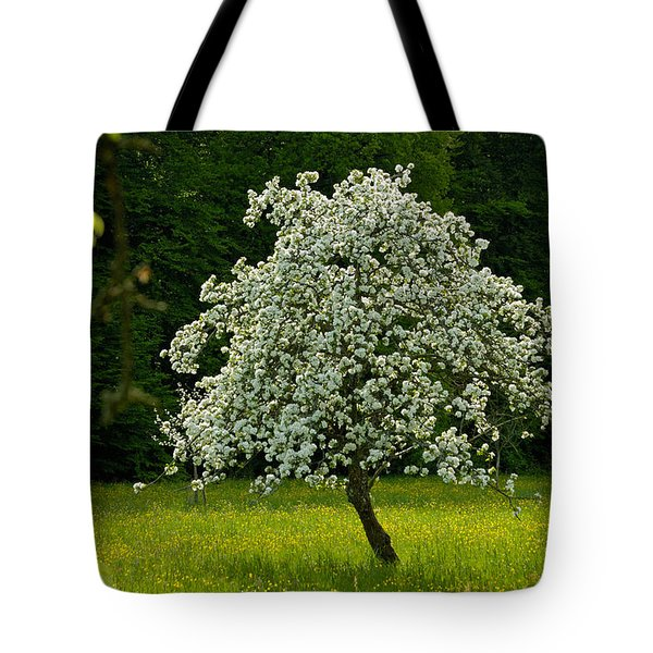 Spring - Blooming Apple Tree And Green Meadow Tote Bag