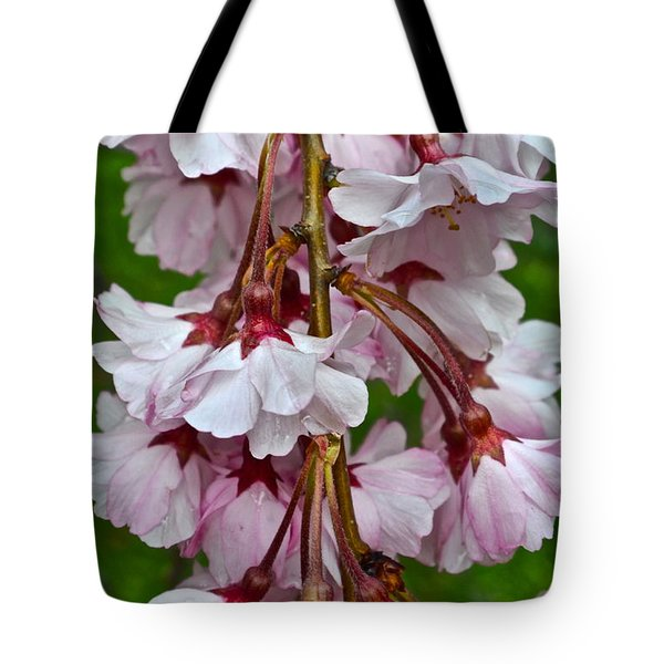 Spring Blossom Tote Bag by Frozen in Time Fine Art Photography