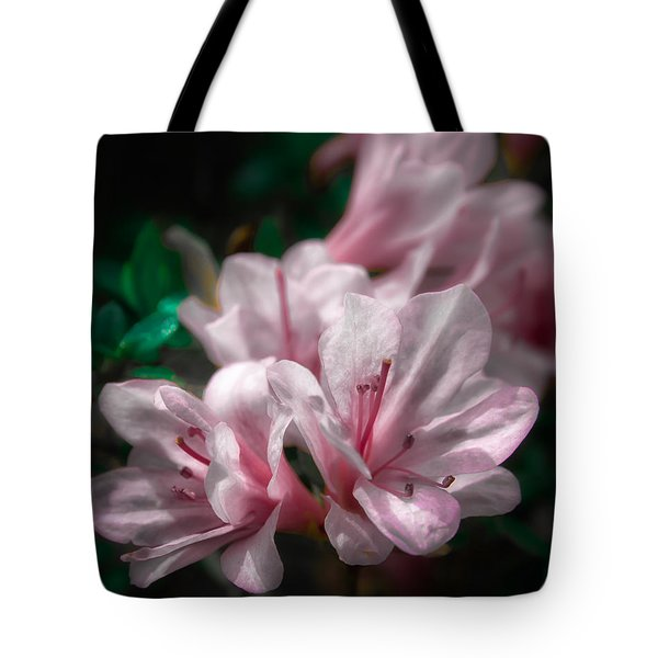 Spring Blossoms #2 Tote Bag
