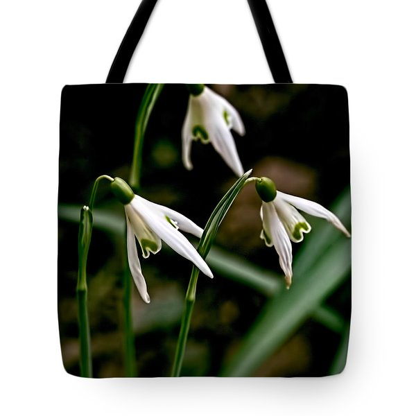 Spring By Leif Sohlman Tote Bag by Leif Sohlman