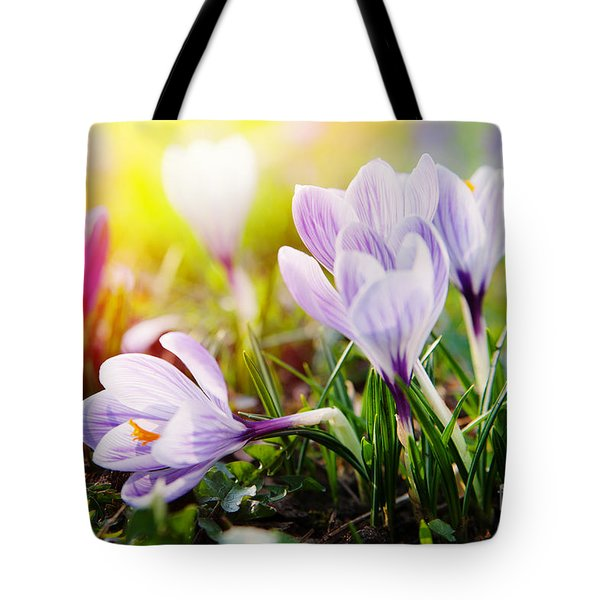 Tote Bag featuring the photograph Spring by Christine Sponchia
