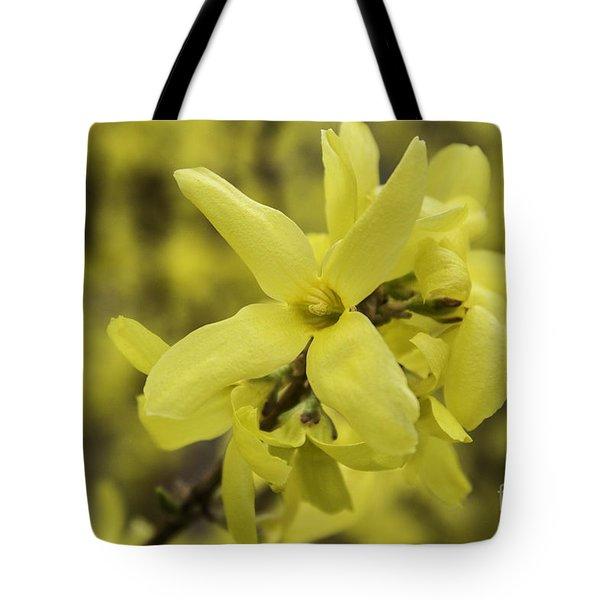 Spring Comes Sofly Tote Bag by Arlene Carmel