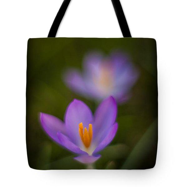 Spring Crocus Glow Tote Bag by Mike Reid