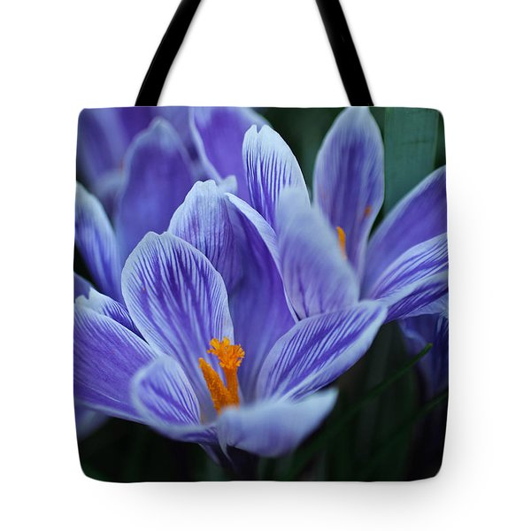 Tote Bag featuring the photograph Spring Crocus by Julie Andel