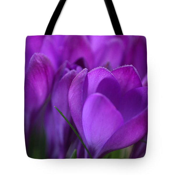 Spring Crocuses Tote Bag by Peggy Collins