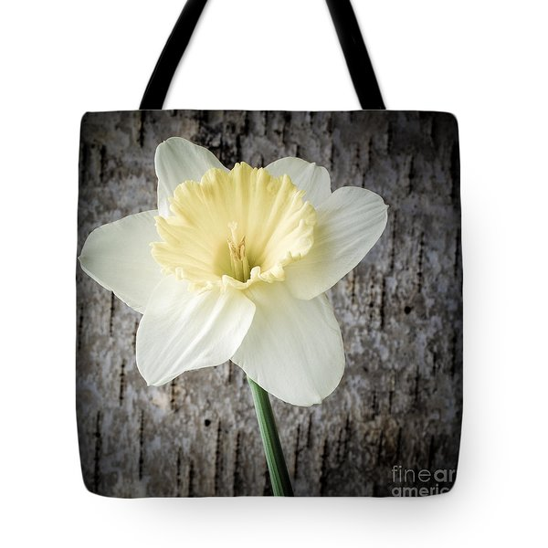 Spring Daffodil Square Tote Bag by Edward Fielding