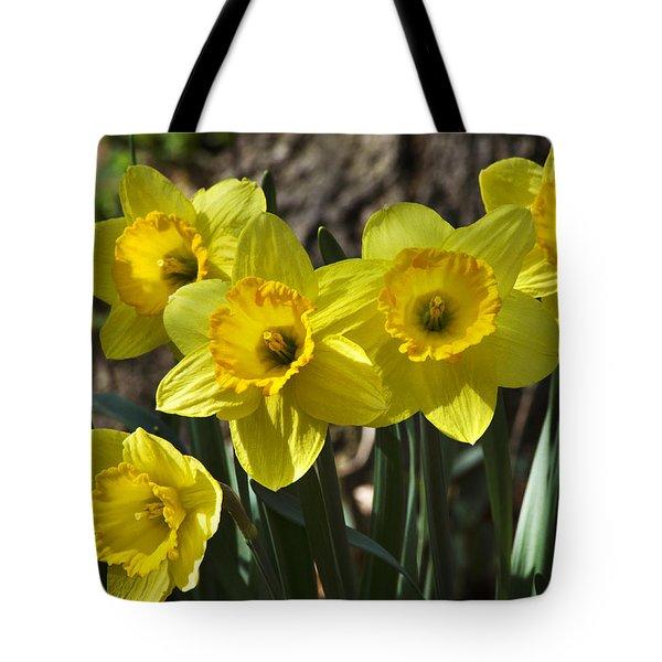 Spring Daffodils Tote Bag by Christina Rollo