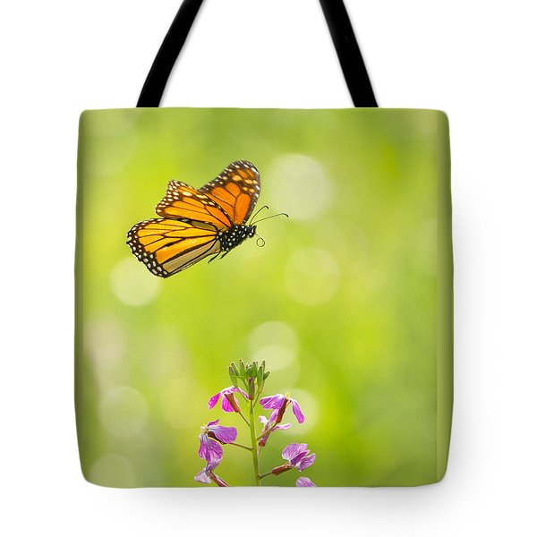 Spring Delight Tote Bag by Alice Cahill