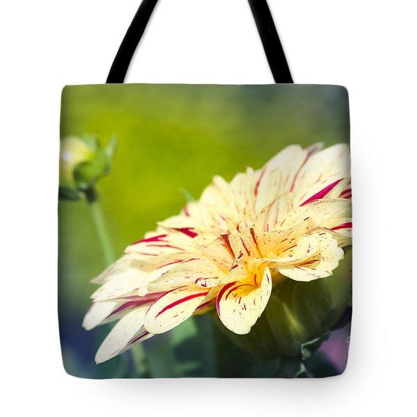 Spring Dream Jewel Tones Tote Bag