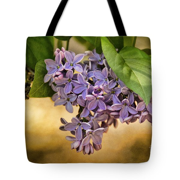 Spring Dreaming Tote Bag by Peggy Hughes
