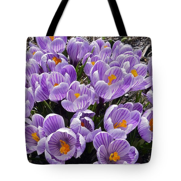 Spring Faces Tote Bag