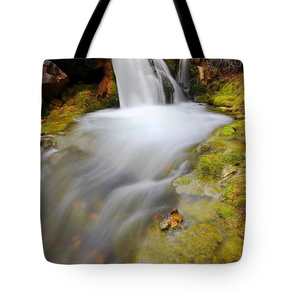 Spring Falls Tote Bag
