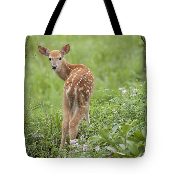 Spring Fawn Tote Bag by Jeannette Hunt