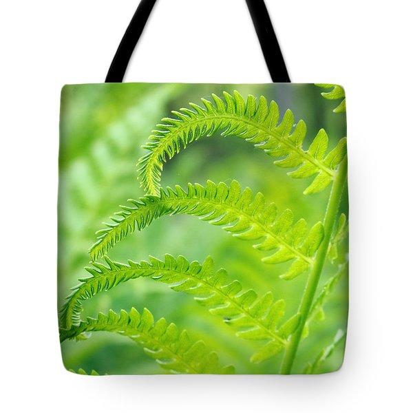 Spring Fern Tote Bag