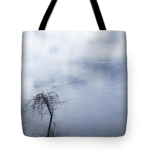 Spring Flood In Georgia Tote Bag