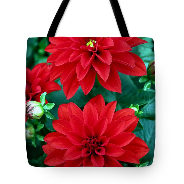 Spring Flowers 5 Tote Bag