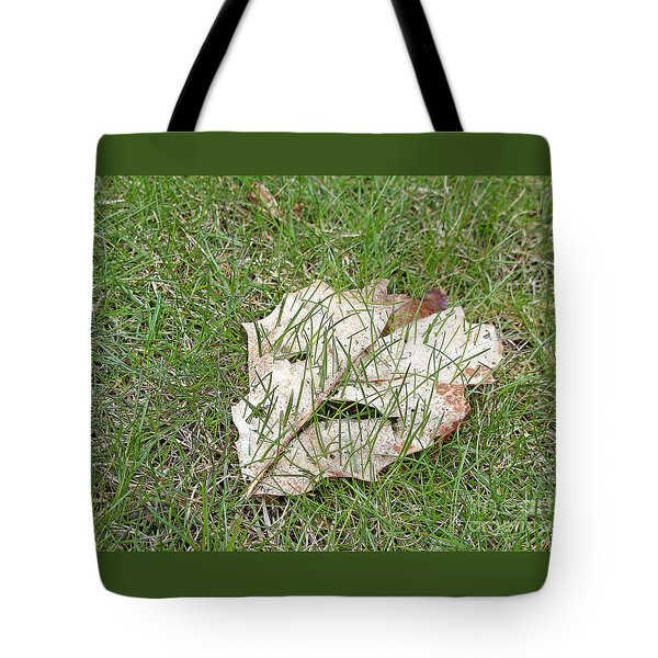 Spring Grass Growing Tote Bag by Ann Horn