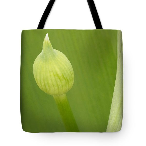 Tote Bag featuring the photograph Spring Green by Inge Riis McDonald
