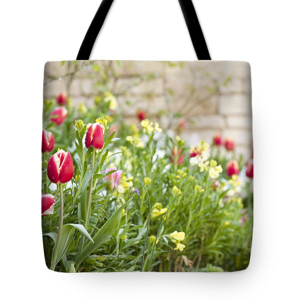 Spring Has Sprung Tote Bag by Anne Gilbert