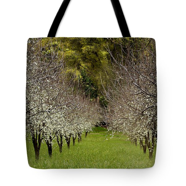 Spring Has Sprung Tote Bag by Bill Gallagher