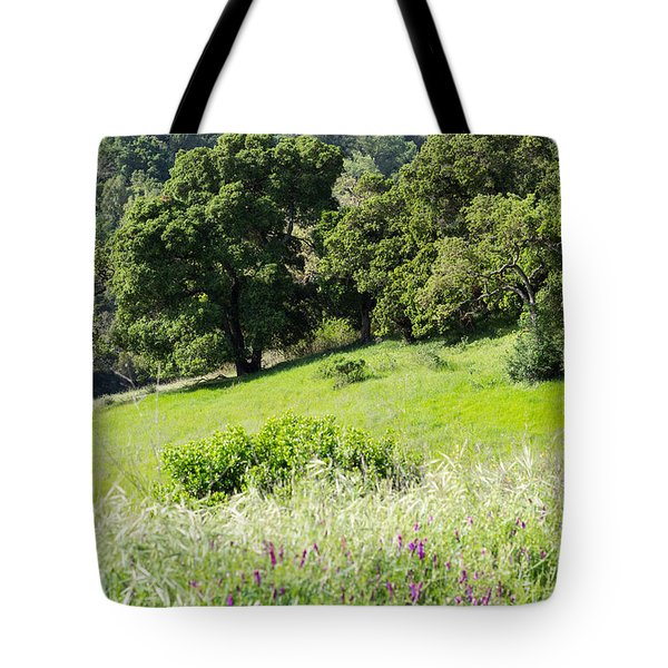 Spring Hike Tote Bag by Suzanne Luft