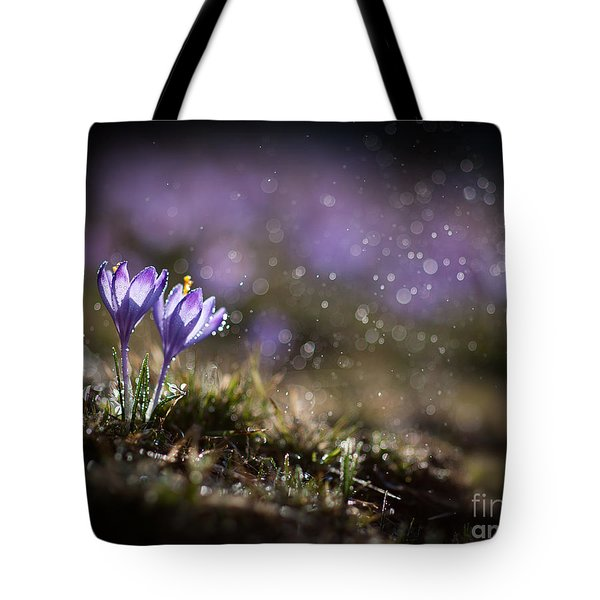 Tote Bag featuring the photograph Spring Impression I by Jaroslaw Blaminsky