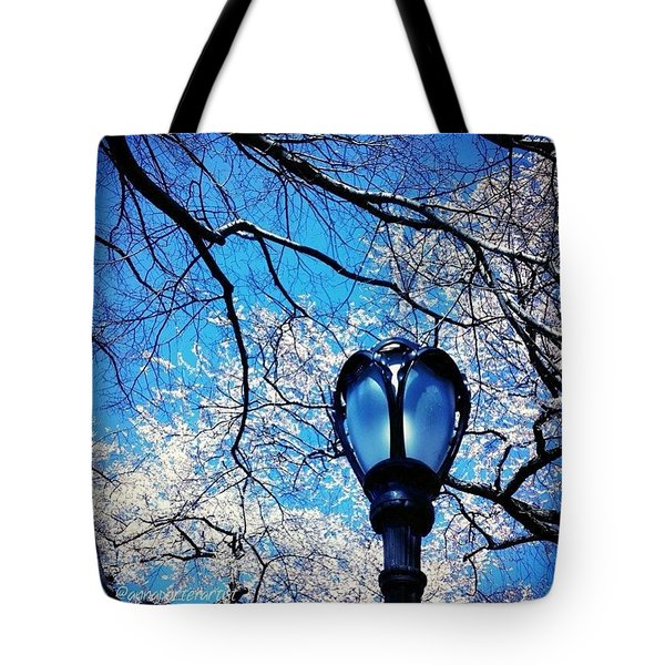 Spring In Central Park New York Tote Bag