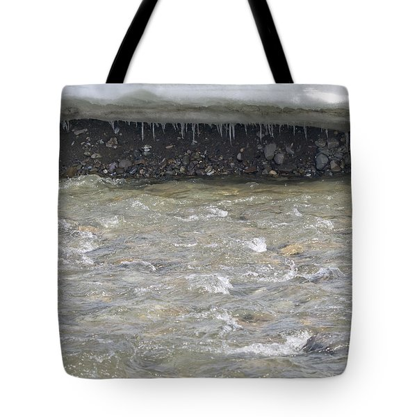 Spring In Denali Park Tote Bag by Tara Lynn