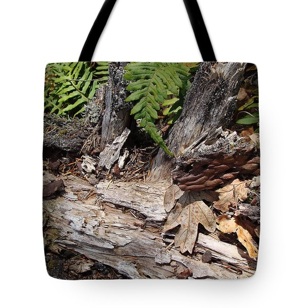 Tote Bag featuring the photograph Spring In Knockan Hill by Cheryl Hoyle