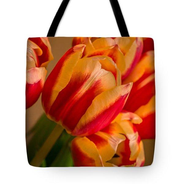 Spring Indoors Tote Bag
