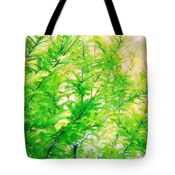 Spring Cypress Beauty Tote Bag