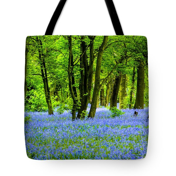 Spring Is Here Tote Bag by Brian Roscorla