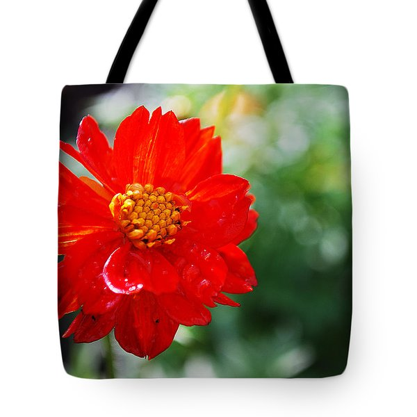Spring Is In The Air Tote Bag by Becky Furgason