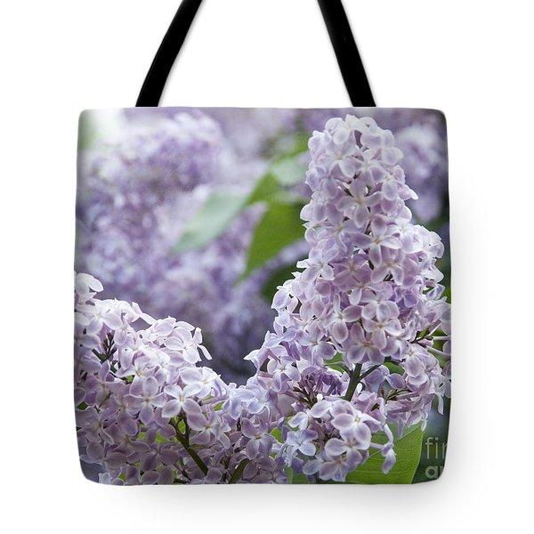 Spring Lilacs In Bloom Tote Bag