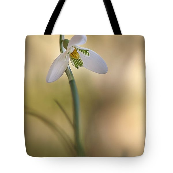 Spring Messenger Tote Bag