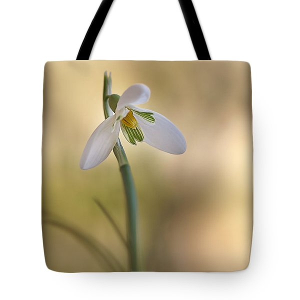 Tote Bag featuring the photograph Spring Messenger by Annie Snel