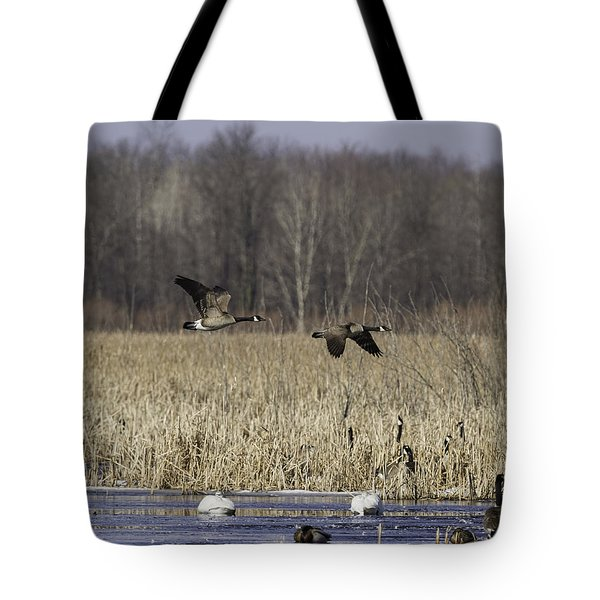 Spring Migration At The Marsh Tote Bag